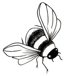 Lavinia Clear Polymer Stamp Mini Bee