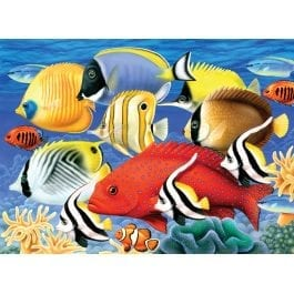 Royal & Langnickel Junior Large Painting By Numbers – Tropical Fish