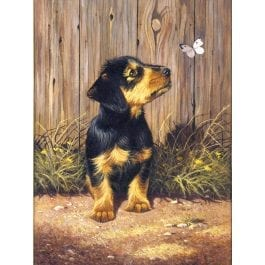 Royal & Langnickel Junior Painting By Numbers – Dachshund Puppy