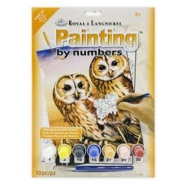 Royal & Langnickel Junior Painting By Numbers – Tawny Owls