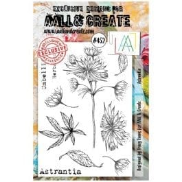 AALL & Create Clear Stamp A5 Astrantia